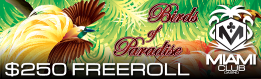Birds of Paradise Slot Freeroll