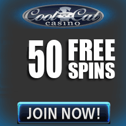 Small Fortune Slot Free Spins Cool Cat Casino