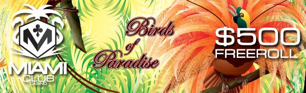 Birds of Paradise Slot Freeroll Tournament