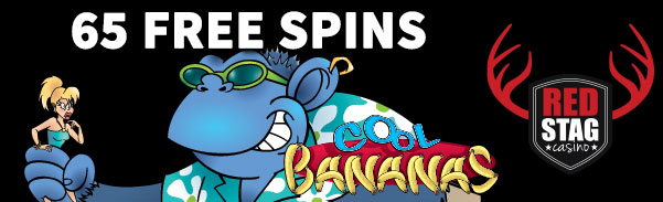 Red Stag Casino Free Spins Bonus Code