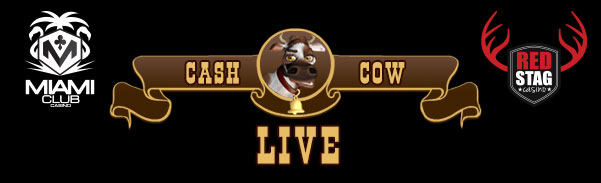 Cash Cow Slot Bonuses