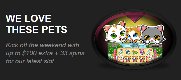 Intertops Casino Purrfect Pets Slot Bonus