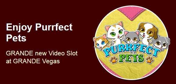 Grande Vegas Casino Purrfect Pets Slot Bonuses