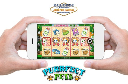 Jackpot Capital Casino Purrfect Pets Slot Bonuses