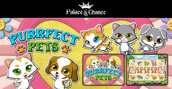 Palace of Chance Casino Purrfect Pets Slot Bonus