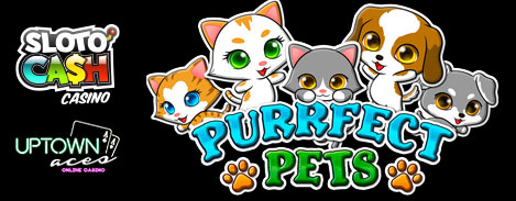 New Purrfect Pets Slot Bonus Coupon Code