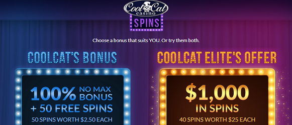 Amazing Cool Cat Casino Bonuses